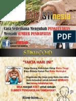 PDF Stin Member Rev 090719