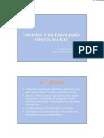 tiroide e paratiroide