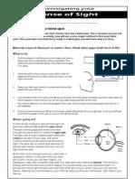 Lesson 3 Eyesight Student Worksheet