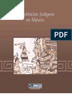 La población indígena de Mexico