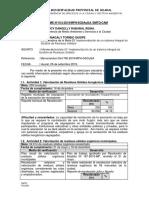 Informe Nº 012 2019 Mph Ccam