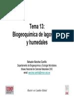Tema 11 BiogLagosRiosHum SALVA (1)