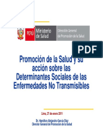 20110131_determinantes_ENT.pdf