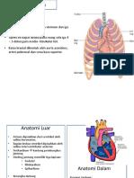 182283998-Pbl-Kardio-Ayya-Ppt-Anatomi.pptx