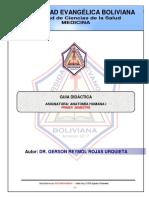 Guia Didactica - Anatomía 1 - (Dr. Rojas)