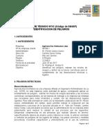 Informe Ténico IPER Agrícola DOS HRNOS