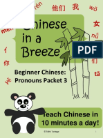 Chinese Pronouns Lesson Packet 3