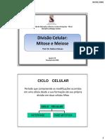 aula 06- divisão celular.pdf