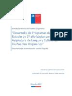 23.5 Informe Jornada Programa de Estudio Diaguita