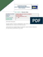 GRL Tarea 1 - JUAN CARLOS OCHOA ALVARADO.docx
