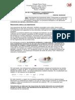 REACCIONES REDOX 2019 (1) (2).docx