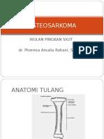 349010024 Pemeriksaan Radiologi Pada Osteosarkoma
