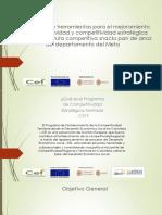 Presentacion PDP Ruta Competitiva Pan de Arroz