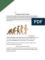 Documento (1) evolucion.docx