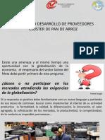 Presentacion Plan Piloto Desarrollo de Proveedores (3)