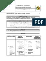 plan pedagogico.docx