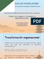 TEORIA DEL CAMBIO Y DESARROLLO ORGANIZACIONAL