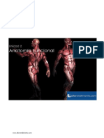 Unidad_2_Anatomia_Funcional22.pdf