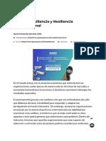importante resiliencia oragnizacional.pdf
