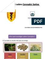 9 CANNABIS ESTUDIO INVESTIGACION UPCH URUGUAY.pptx