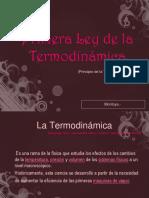 leyes termodinamica