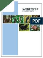 Impacto de La Tala Indiscriminada y Tráfico de Terrenos