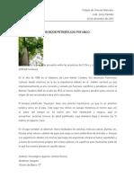 BOSQUE PETRIFICADO PUYANGO.docx