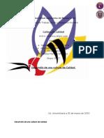 50262500-resumen-Calidad-desarrollo-de-una-cultura-de-calidad.pdf