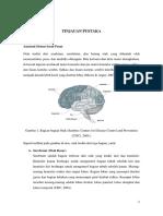 Bedah Saraf Anatomi Fisiologi Referat Edited