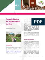 RedEAmerica Sostenibilidad ODBs.pdf