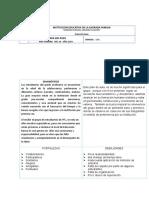 PLAN DE AULA 2014.doc