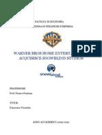 Caso Warner Bros Snowblind