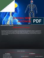Snc 5 Sistema Nervioso Autónomo (1)