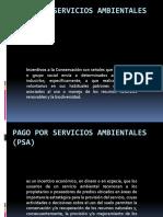 11. Pago Por Servicios Ambientales (PSA)