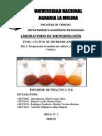 Informe 6. Lab. Microbiología unalm prro :v