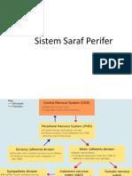 sistem saraf perifer
