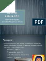Tipos de Percepción (1)
