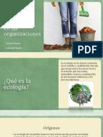 Teoria de la población ecológica.pptx