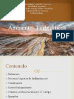 turbiditas.pptx