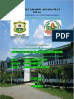 Alzamora, Programas y Lineas de Investigacion