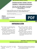 ARTÍCULO MACROMOLECULAS.pptx