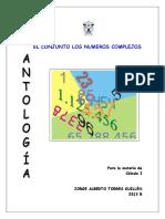 Cap 1 - Conjunto de N. complejos.pdf