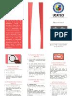 Brochure Marco Teórico