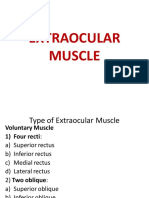 20. Extraocular muscle and some major vessels.pdf