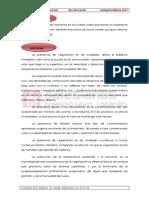 Word Isla de calor (Divulgaciencia)modificadodefinitivo.pdf