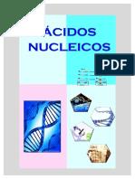 Acidos Nucleicos Teoria Quimica