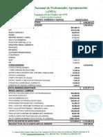 Informe Financiero ANPA Agosto 2019