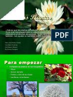 lasplantas-150525181100-lva1-app6892.pdf