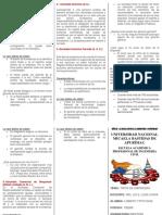 TIPOS DEL EMPRESAS EN EL PERÚ TRIPTICO.docx