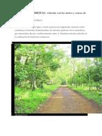 COBERTURA FORESTAL.pdf